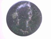 YM0245_1.JPG